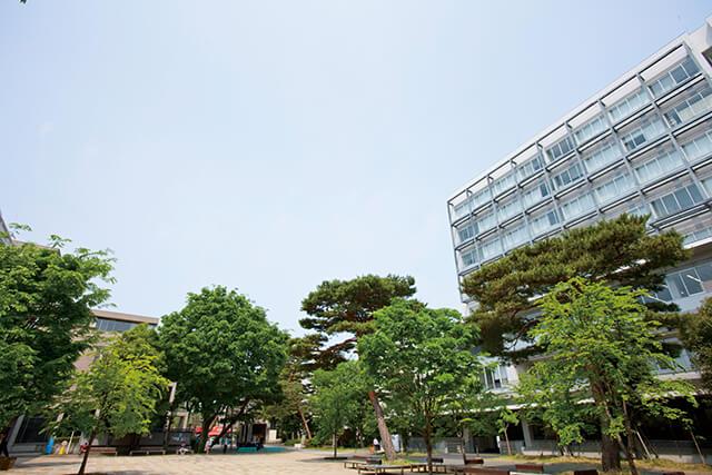 「成城大学(東京都世田谷区成城6-1-20)」の画像検索結果