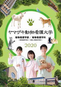 ヤマザキ動物看護大学