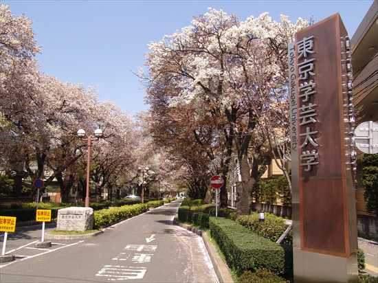 「東京学芸大学」の画像検索結果
