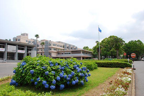 大学 出願 状況 長崎