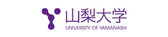 出願 山梨 状況 大学